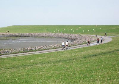 Gleich hinter dem Sandstrand können Sie mit dem Rad am Wasser fahren
